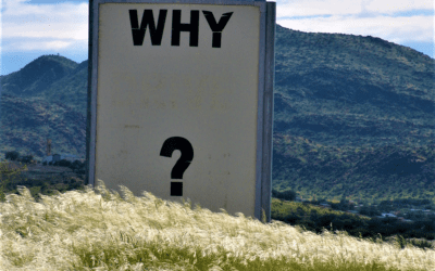 A Concern for All Good Leaders: The End of 'Why?'